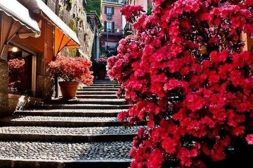 Σκαλιά μέσα σε πόλη