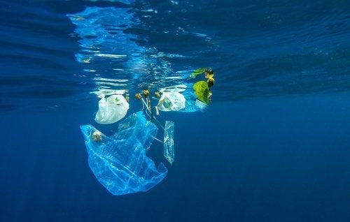 ωκεανός, σκουπίδια