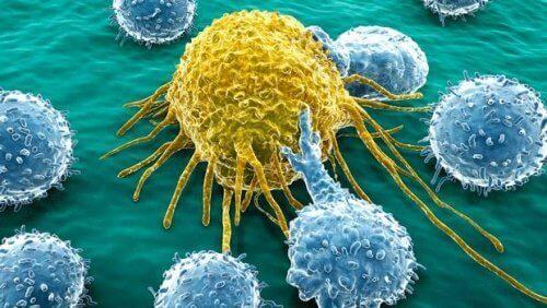 Νέο μόριο σύμμαχος κατά του καρκίνου των ωοθηκών και του παγκρέατος