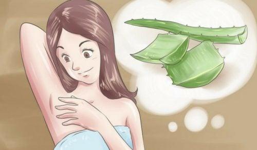 5 φυσικά αποσμητικά για να πείτε αντίο στη δυσοσμία των μασχαλών