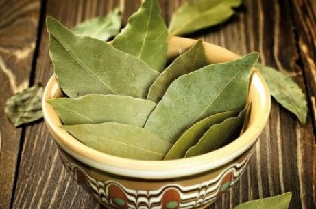 Ρόφημα με κανέλα - Φύλλα δάφνης