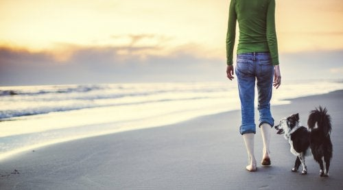 διαλογιστείτε όσο περπατάτε
