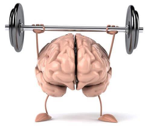 Σημαντικές συμβουλές για έναν υγιή εγκέφαλο