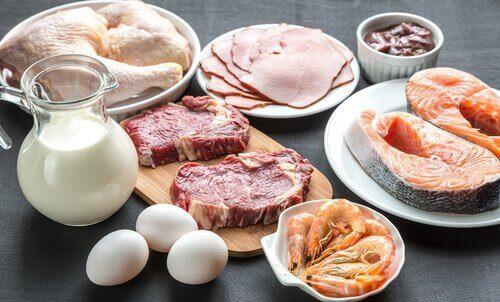 κρέατα, πρωτεΐνη