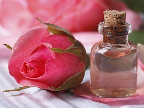 αιθέριο έλαιο, αγριο τριαντάφυλλο - θεραπείες που αναζωογονούν το δέρμα