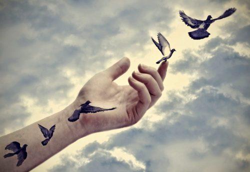 Συγχωρήστε τους γονείς σας - Πουλιά που πετούν