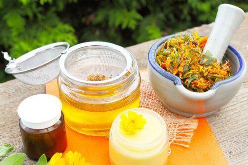 άρνικα ως βότανο και ως έγχυμα Ανακούφιση από την τενοντίτιδα