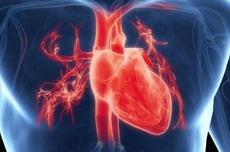 υγιή καρδιά