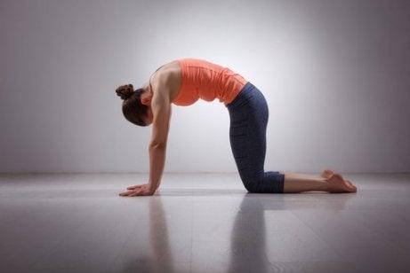Πρωινές ασκήσεις, τέντωμα πλάτης