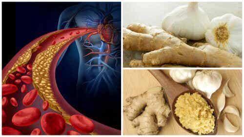 Υψηλή πίεση και χοληστερίνη: καταπολεμήστε τις με τζίντζερ και σκόρδο