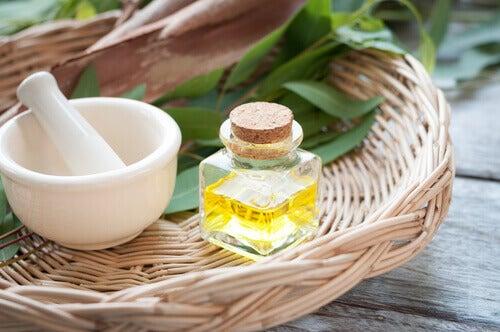 σπιτικές θεραπείες για να απαλλαγείτε από τις ψείρες- ελαιο ευκαλυπτου
