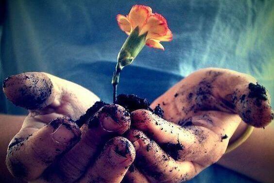 βουδιστικές έννοιες χερια με λουλουδι