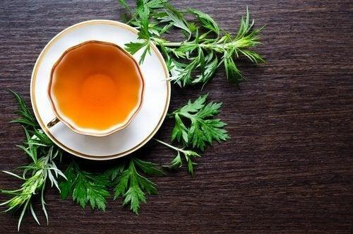βότανα και τσάι