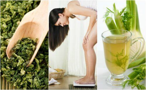 Εύκολη απώλεια βάρους με αυτά τα 5 φαρμακευτικά φυτά
