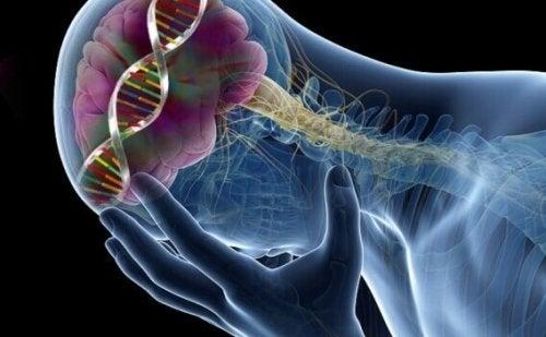 9 επιπτώσεις που έχουν τα χαμηλά επίπεδα σεροτονίνης