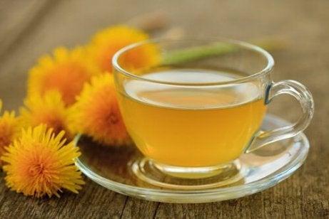 Μειώστε την αρτηριακή σας πίεση με αυτές τις πέντε θεραπείες με βότανα, πικραλίδα