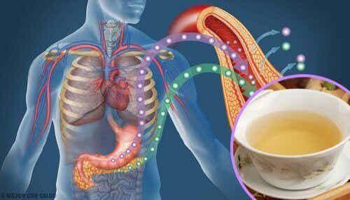 4 τσάγια για να μειώσετε τα επίπεδα του σακχάρου στο αίμα