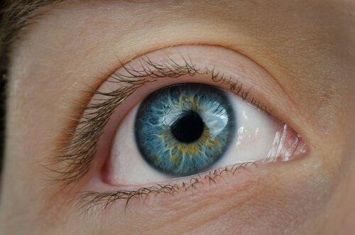 γυναικείο μπλε μάτι βάλετε τα αβγά