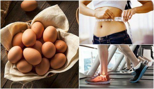 7 καλοί λόγοι να βάλετε τα αβγά στη διατροφή σας