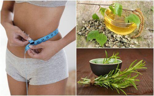 8 υγιεινά βότανα που θα βοηθήσουν τη δίαιτα σας για απώλειας βάρους