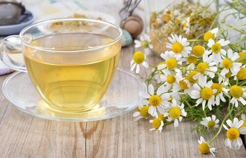 φλιτζάνι με τσάι, άνθη χαμομηλιού