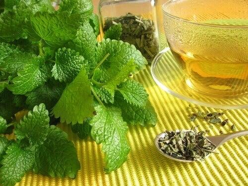 τσάι, βότανα, έντερο- το σύνδρομο ευερέθιστου εντέρου