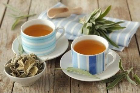 τσάι, βότανα, το σύνδρομο ευερέθιστου εντέρου
