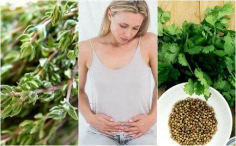 6 βότανα κατά του μετεωρισμού για να απαλλαγείτε από τα αέρια
