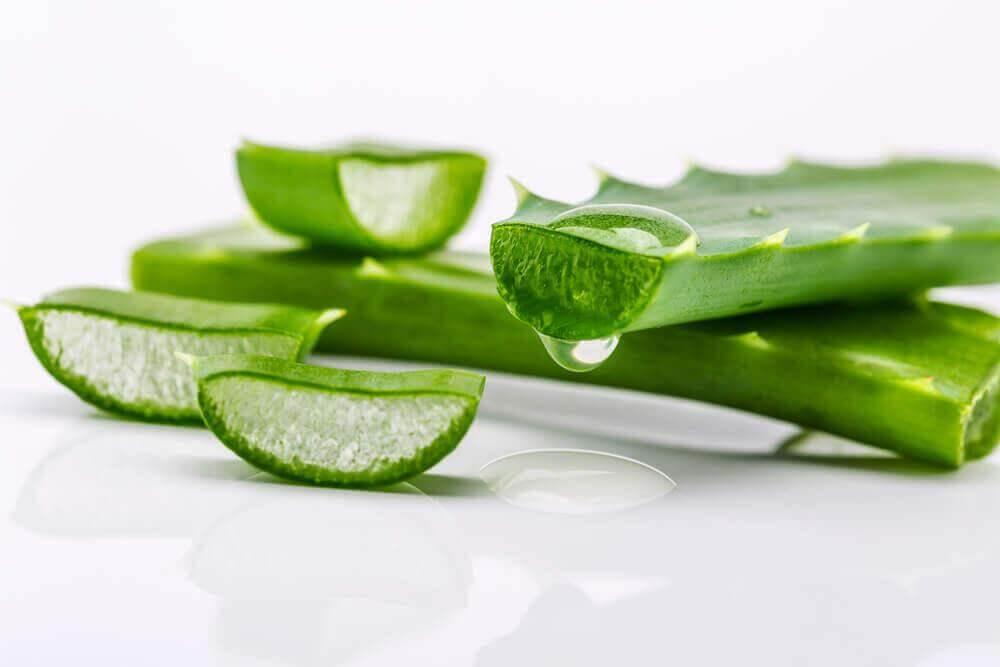 Φυσικό ντεμακιγιάζ - Κομμένα φύλλα αλόης και ζελέ