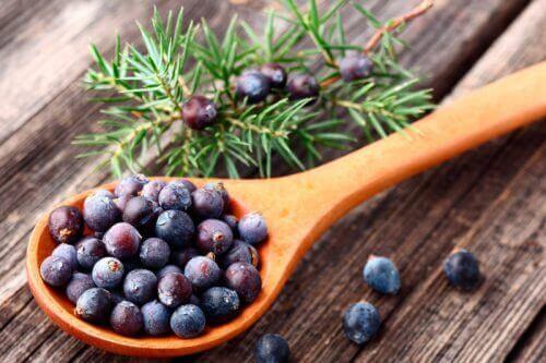 καρποί, αδυνάτισμα- υγιεινά βότανα