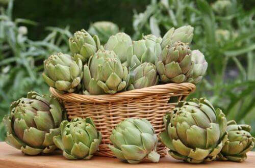 αγκινάρα, αδυνάτισμα- υγιεινά βότανα
