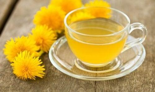 πικραλίδα, τσάι, φανταστικά εγχύματα για να αποτοξινώσετε το σώμα σας, αποτοξινωτικά εγχύματα