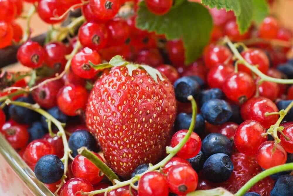 Θεραπείες για τους κιρσούς και από στόματος θεραπείες