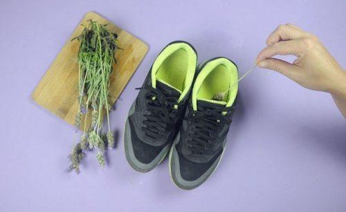 Άσχημες οσμές στα παπούτσια - Παπούτσια και λεβάντα