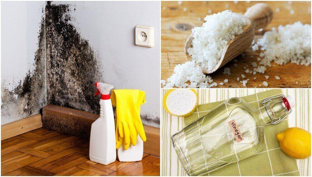 5 τρόποι για να εξαλείψετε την υγρασία στο σπίτι σας