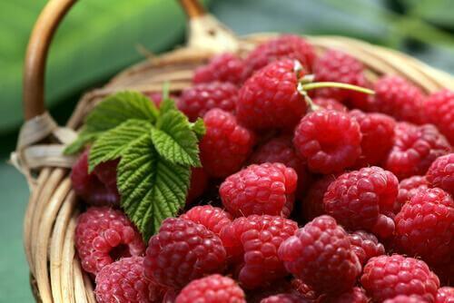 6 γευστικά αποτοξινωτικά ροφήματα που θα σας βοηθήσουν ν' αδυνατίσετε, μαύρα μούρα και λεβάντα