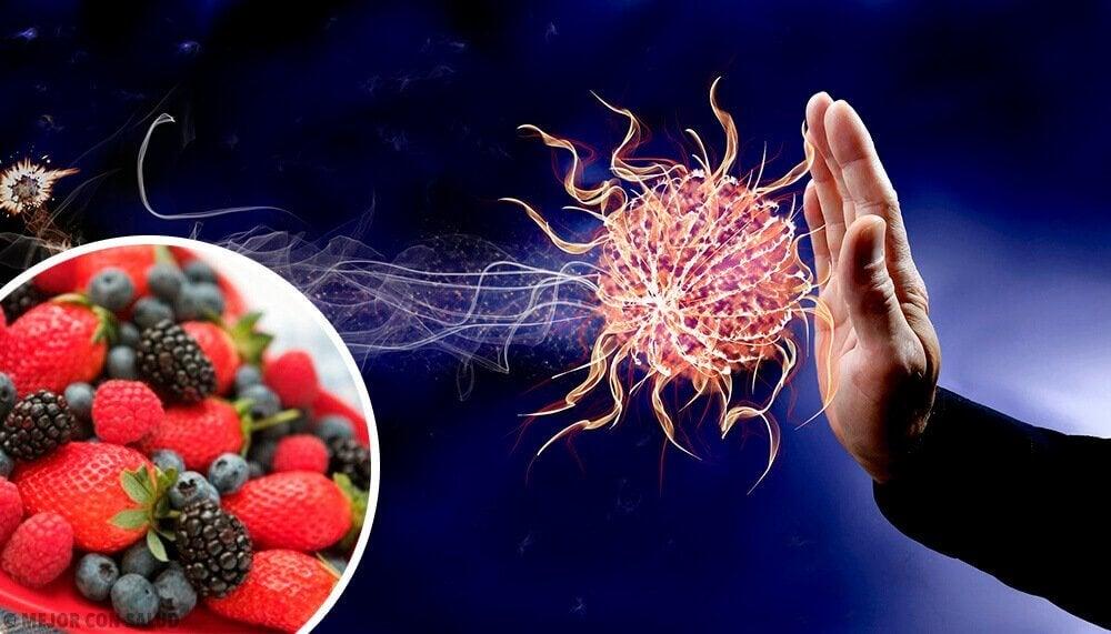 9 τροφές που ενισχύουν το ανοσοποιητικό σύστημα