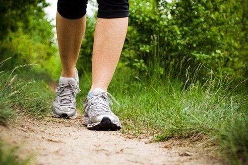 περπάτημα στο δάσος για καλή φυσική κατάσταση