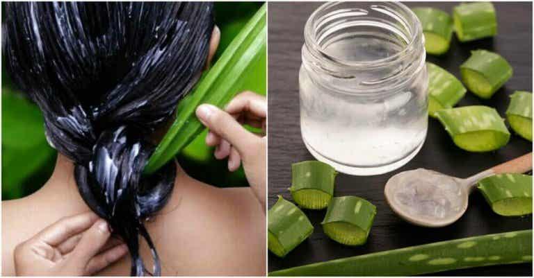 Πώς ν' αποκτήσετε πιο υγιή μαλλιά με αλόη. Δοκιμάστε τις προτάσεις μας