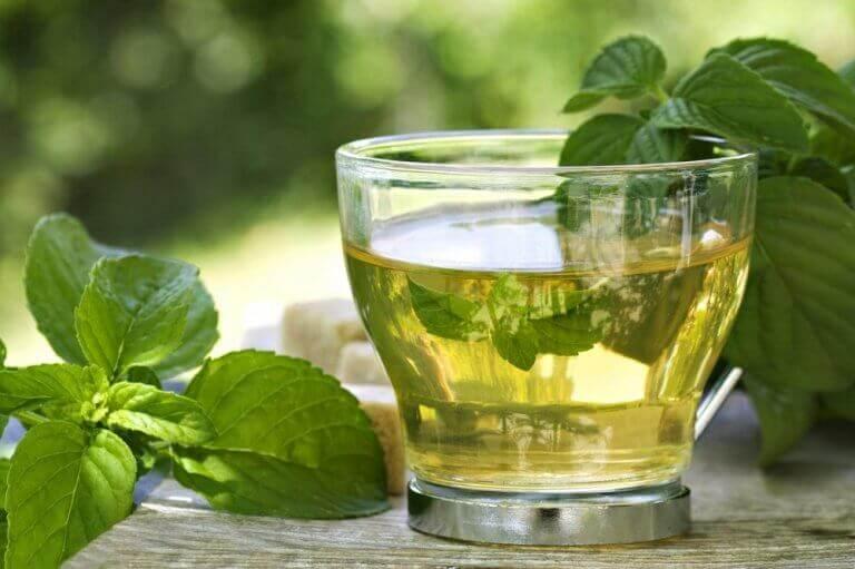 ροφήματα με πράσινο τσάι και μέντα