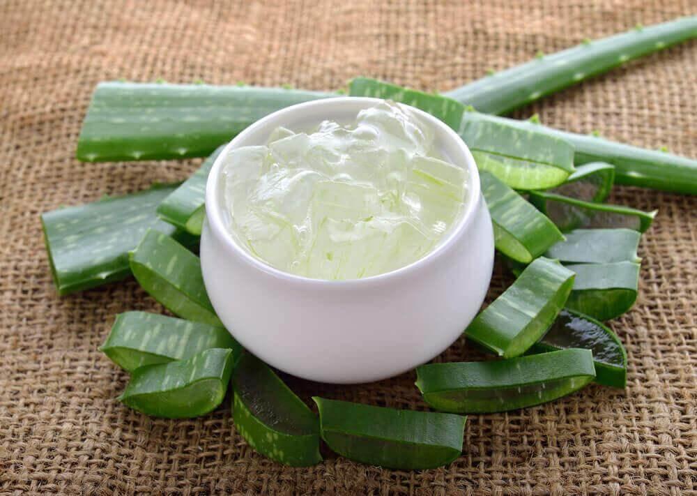 Πώς να θεραπεύσετε τις αιμορροΐδες - Φύλλα αλόης και ζελέ