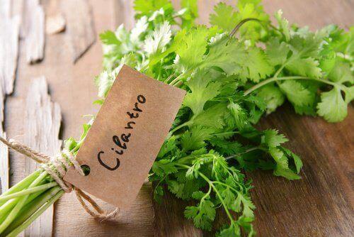 7 ισχυρά οφέλη του κόλιανδρου στην υγεία