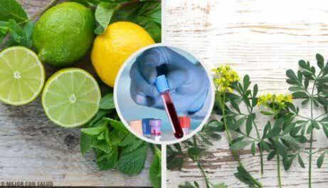Carrulim: φυσική θεραπεία με απήγανο και λεμόνι. Είναι τέλεια