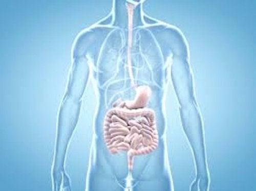 ακτινογραφία του σώματος, μάθετε ποια είναι τα πρώιμα σημάδια του καρκίνου