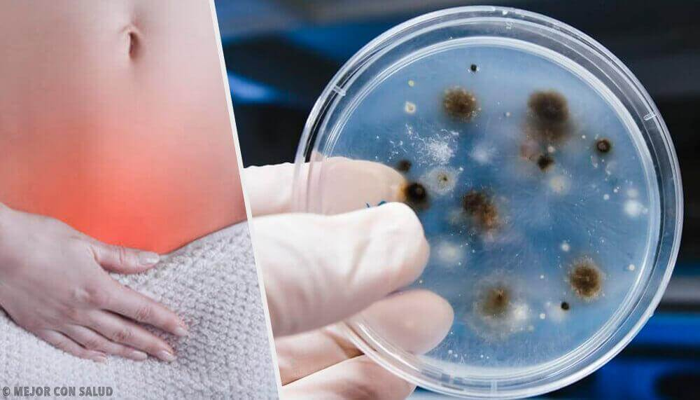 Μάθετε τα είδη και τις αιτίες των κολπικών λοιμώξεων