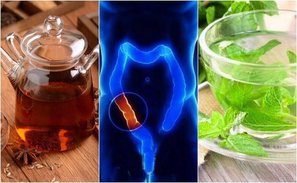 5 φαρμακευτικά ροφήματα για να καθαρίσετε φυσικά το παχύ έντερο