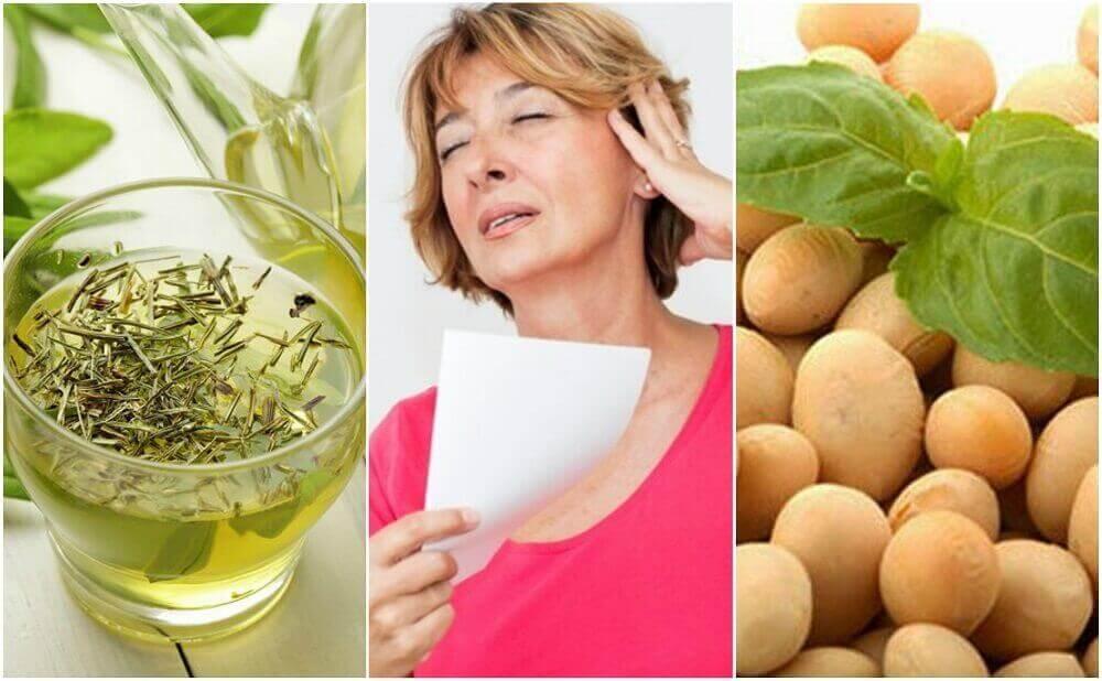 5 φυσικά προϊόντα για να διαχειριστείτε την εμμηνόπαυση