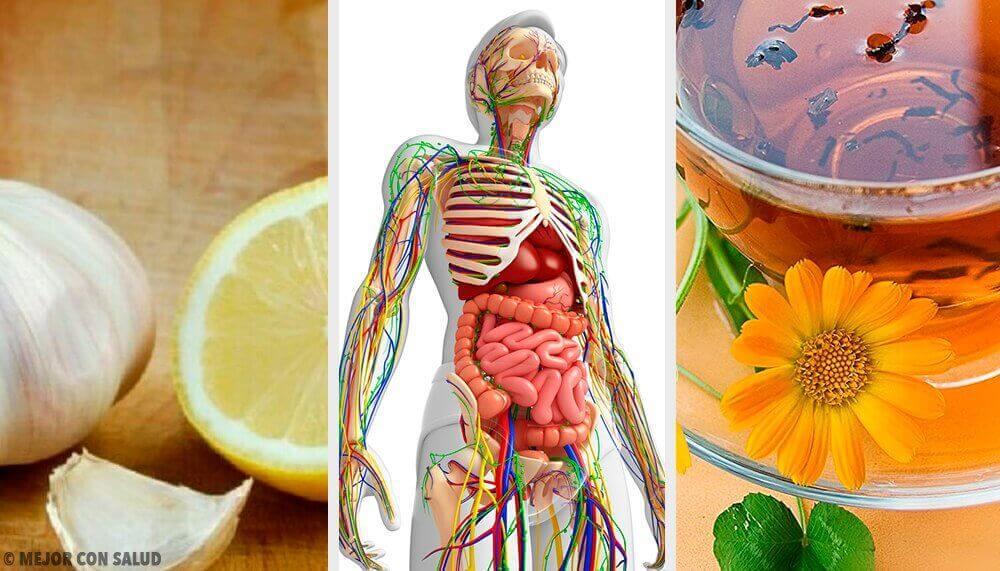 6 φυσικές θεραπείες για την αποτοξίνωση του λεμφικού συστήματος