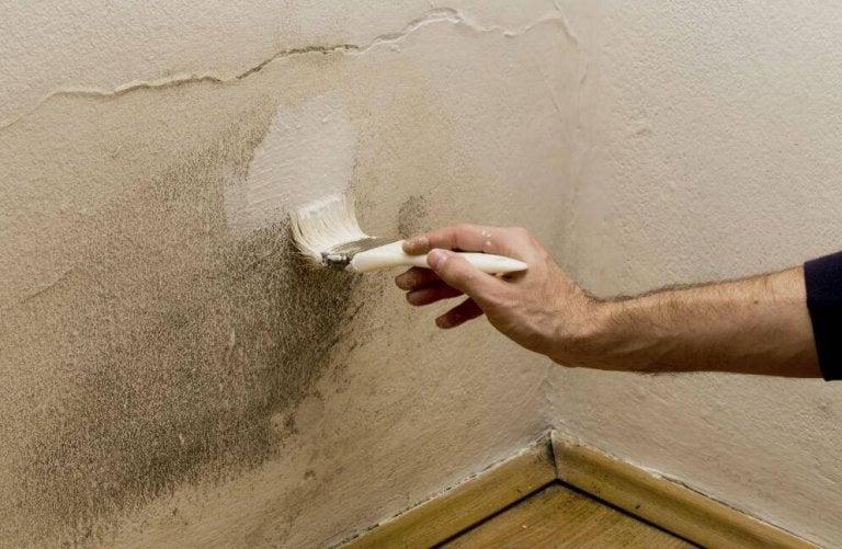 Υγρασία στο σπίτι; Ξεφορτωθείτε το πρόβλημα με πέντε τρόπους