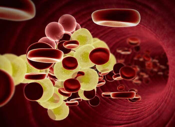 ελέγξετε την κακή χοληστερίνη στο αίμα